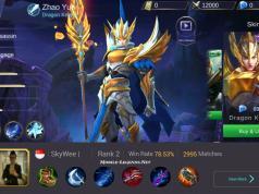 Zhao Yun High Damage New Pro Build