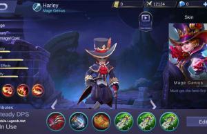 Harley Full Physical Damage Build