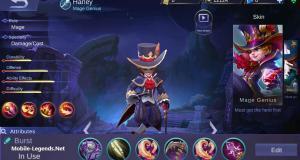 Harley High Damage Magic Build