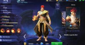 Valir-Hero-Techniques-and-Build